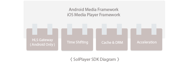 SolPlayer SDK Diagram